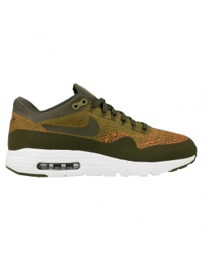 Nike Air Max 1 Ultra Flyknit 843384-300
